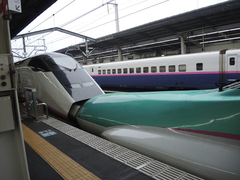 Japanese train system