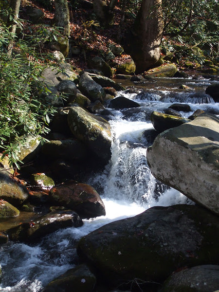 A waterfall trickles next to a Great Smoky Mountain National Park trail.