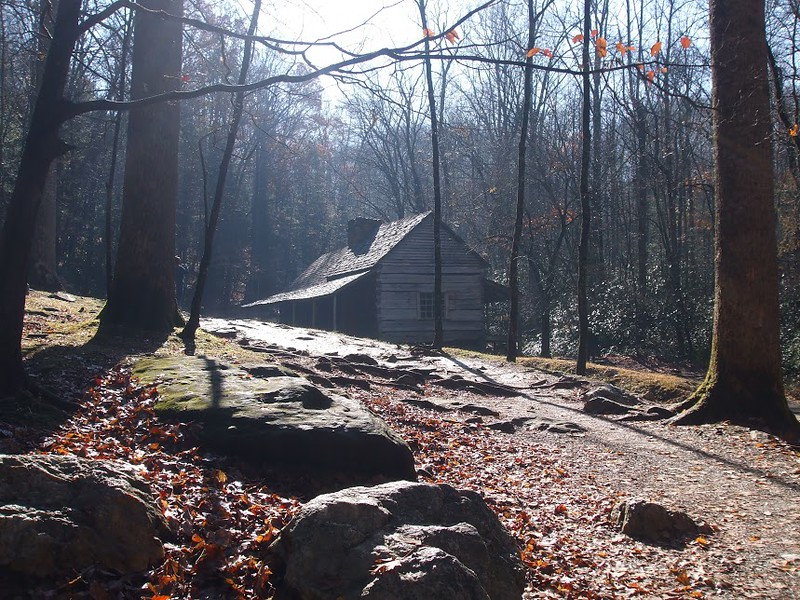 Mountaineer Cabin stands in a glade of trees in Cades Cove, Tennessee