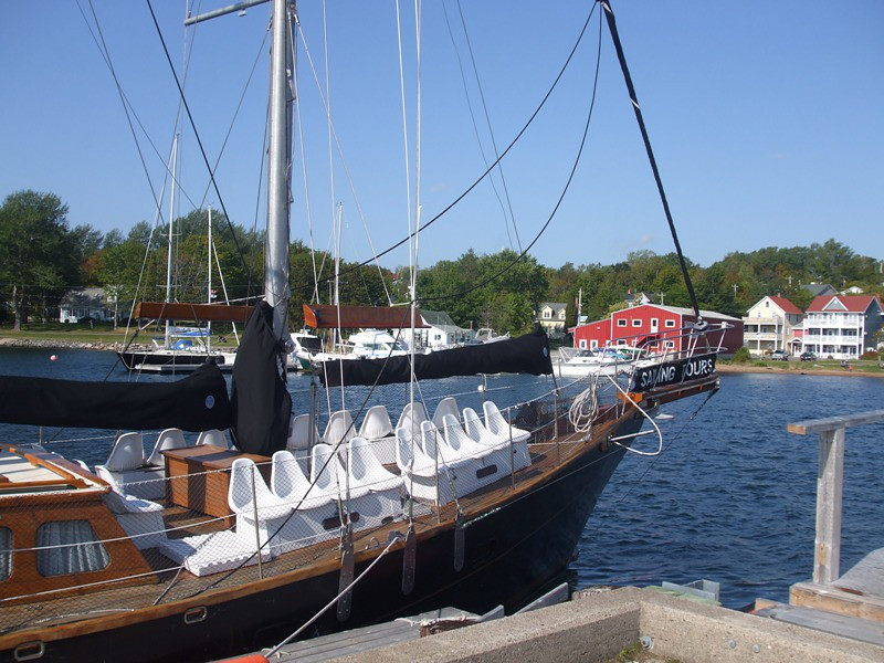 Amoeba sailing boat on Bras D'or Lake provides a Nova Scotia wildlife experience that boomer travelers will appreciate.