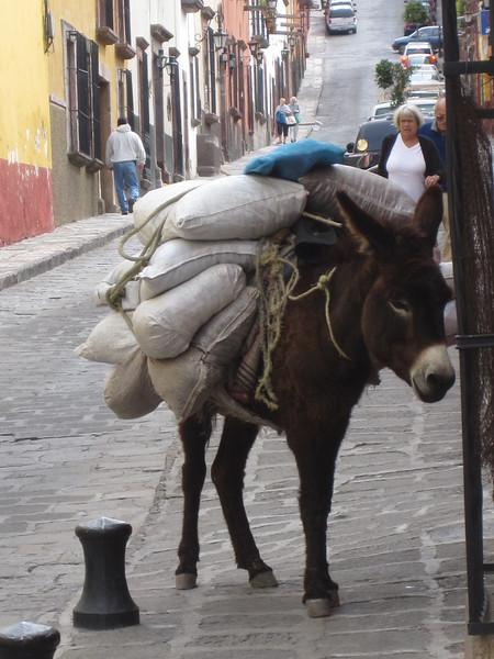 mexico-san-miguel-de-allende