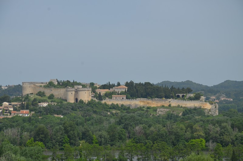 Palais Papes from a distance